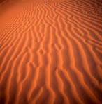 Ripples in desert sand, Sahara desert, Morocco