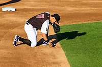 Milwaukee Brewers shortstop Tyler Saladino (17) draws in the dirt prior to a rehab outing with the Wisconsin Timber Rattlers in a Midwest League game against the Clinton LumberKings on June 29, 2018 at Fox Cities Stadium in Appleton, Wisconsin. Clinton defeated Wisconsin 9-7. (Brad Krause/Four Seam Images)