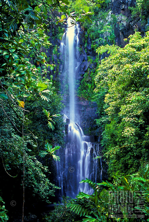 A picturesque waterfall in a rainforest on the Road to Hana, Maui, Hawaii