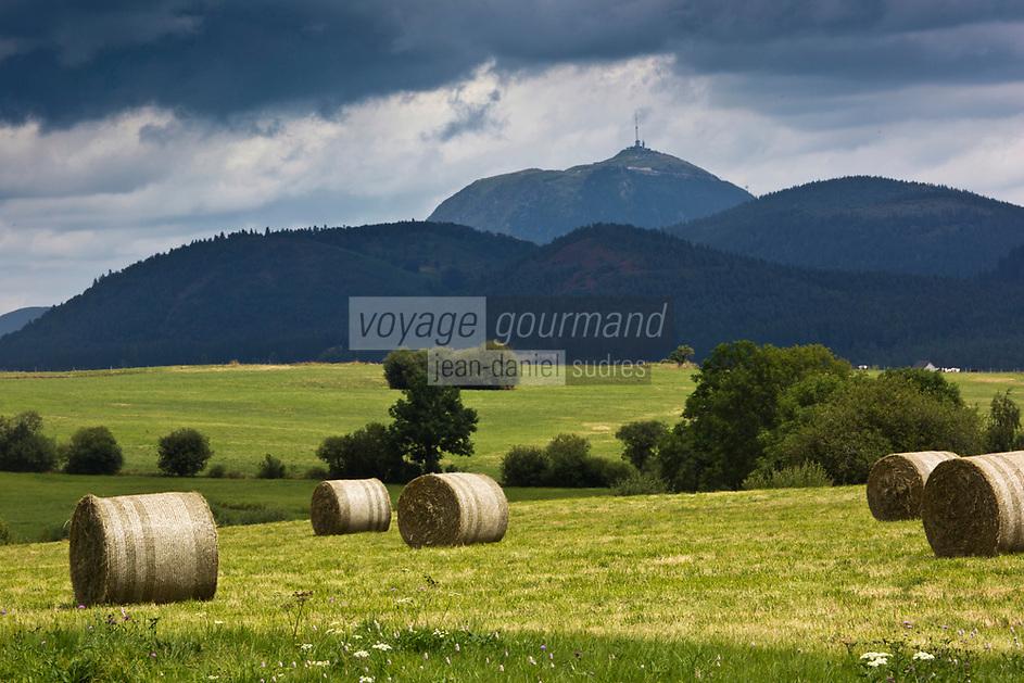 Europe/France/Auverne/63/Puy-de-Dôme/Parc Naturel Régional des Volcans/ Env de Saulzet-le-Froid: Le Puy de Dome et la Chaine des Puys