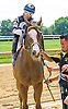 My Charming Clyde winning at Delaware Park on 8/29/16