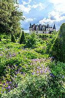 France, Indre-et-Loire (37), Amboise, château d'Amboise, jardin paysager avec topiaires de laurier du Portugal (vérif), cardons, géranium, armoise