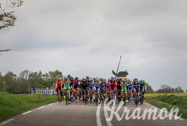 peloton in Holland<br /> <br /> 52nd Amstel Gold Race (1.UWT)<br /> 1 Day Race: Maastricht &rsaquo; Berg en Terblijt (264km)