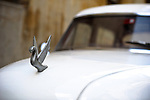 HAVANA - JANUARY 3: The hood ornament on a vintage car in Havana, Cuba.  Legislation passed in 2011 has legalized car sales to all Cuban citizens who were previously restricted to owning pre-revolution vehicles.