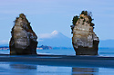 Sea stacks with Mount Taranaki (Mount Egmont) in background; North Taranaki Bight; dawn, North Island, New Zealand