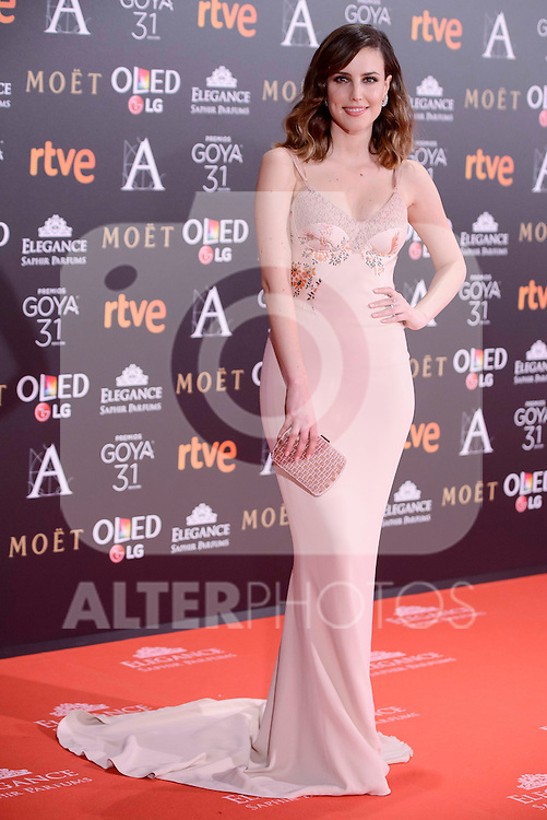 Natalia de Molina attends to the Red Carpet of the Goya Awards 2017 at Madrid Marriott Auditorium Hotel in Madrid, Spain. February 04, 2017. (ALTERPHOTOS/BorjaB.Hojas)