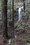 Gazos Creek forest waterfall