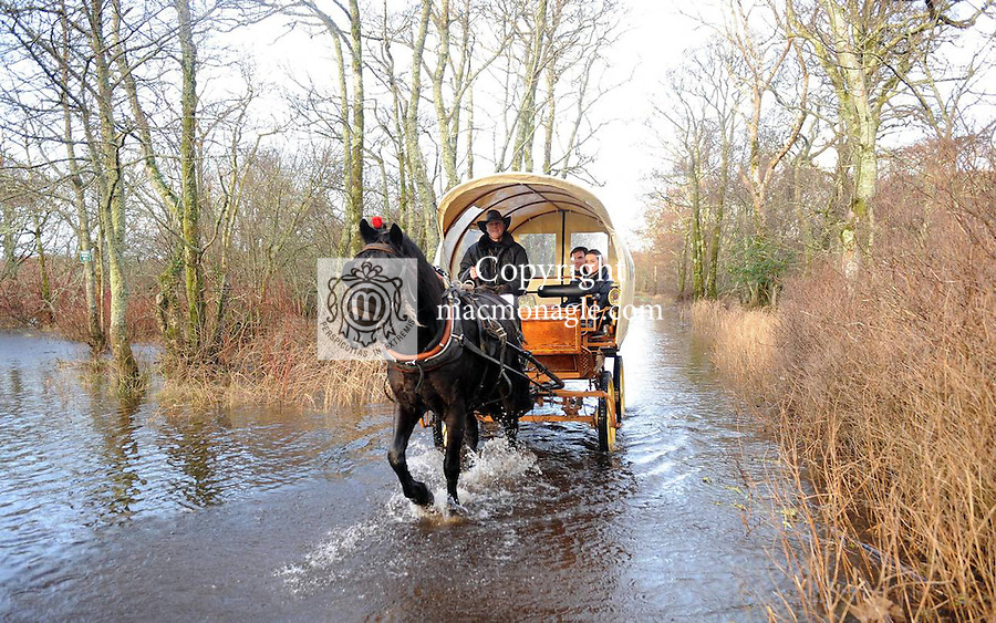03-01-12: Killarney jarvey Martin McCarthy and his horse 'Paddy' carry honeymoon couple John Halton, Cork, and Sarah French, London,  through a flooded area in   Killarney National Park on Tuesday.  Picture: Eamonn Keogh (MacMonagle, Killarney)