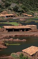Amérique/Amérique du Sud/Pérou/Cuzco : Tuileries de Pinipampa