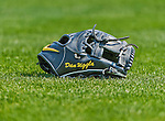 20 March 2015: Washington Nationals infielder Dan Uggla's glove lies on the infield grass prior to a Spring Training game against the Houston Astros at Osceola County Stadium in Kissimmee, Florida. The Nationals defeated the Astros 7-5 in Grapefruit League play. Mandatory Credit: Ed Wolfstein Photo *** RAW (NEF) Image File Available ***