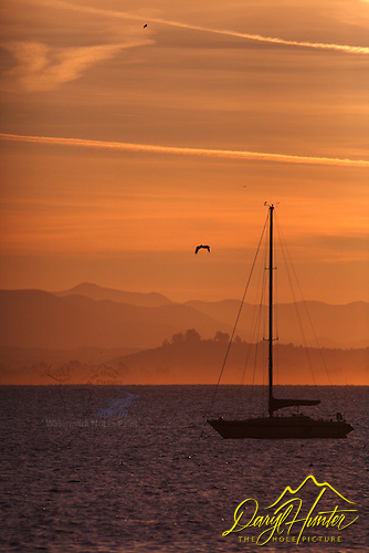 Moored sailboat at sunrise at Port San Luis.