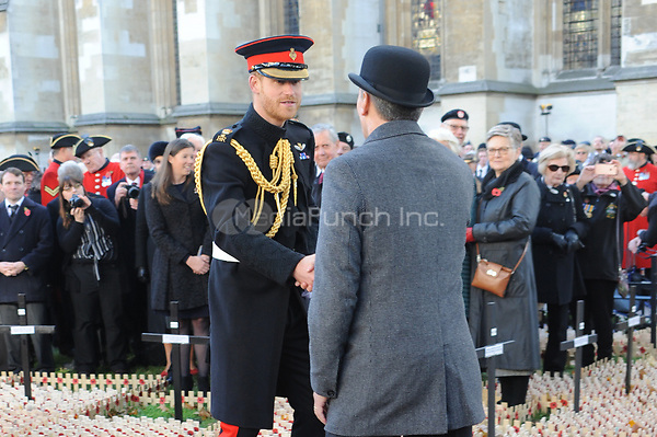 Prince Harry, Duke of Sussex attends the opening of the Field of Remembrance at Westminster Abbey in London.<br /> <br /> The Field of Remembrance has been held in the grounds of Westminster Abbey since November 1928, when only two Remembrance Tribute Crosses were planted growing in number to approximately 70,000 today.<br /> <br /> NOVEMBER 8th 2018. Credit: Matrix/MediaPunch ***FOR USA ONLY****<br /> <br /> REF: TST 184111