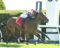 LEXINGTON, KY - APRIL 08: Holding Gold wins the 21st running of the Shakertown (Grade 2) $250,000 for owner Live Oak Plantation, trainer Mark Casse and jockey Joel Rosario.  April 08, 2010