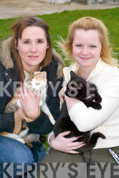 TRUST: Tigger Trust campaigner Leah Parker Bond (left) presents a cat to Heidi Grimwood, Killarney, on Friday..
