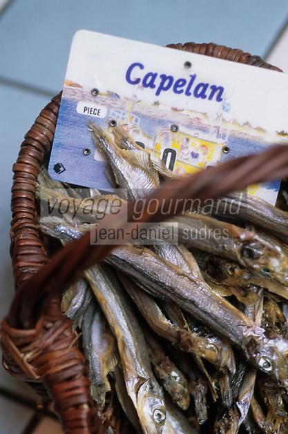 Europe/France/Bretagne/Ille et Vilaine/St Malo/Paramé: Panier de Capelans poissons osseux de l'atlantique nord voisins de l'éperlan à la Poissonnerie de Paramé