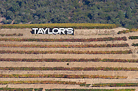 vineyards taylor's sign douro portugal