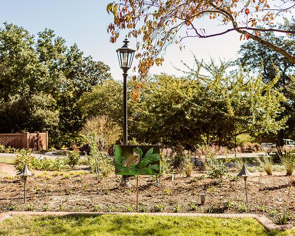 October 26, 2017. Raleigh, North Carolina.<br /> <br /> A bird photograph awaits the arrival of the garden dedication attendees. <br /> <br /> A new garden designed by Ben Skelton containing native Plants For Birds was dedicated at the North Carolina Executive Mansion.
