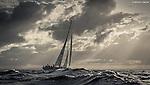 Leg 3 - Southern Ocean - Clipper Round the World Yacht Race 13/14