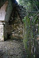 ruinas y pirámides de la ciudad Maya llamada .Parque en el estado de Chiapas  en el suroeste.de  Mexico que goza de clima tropical. Imagen dentro de una piramide .