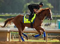 ARCADIA, CA - JUNE 19:  The 13th Triple Crown Champion, Justify, with Humberto Gomez up, gallops for the first time after returning home to Santa Anita Park on June 19, 2018 in Arcadia, California.(Photo by Alex Evers/Eclipse Sportswire/Getty Images)