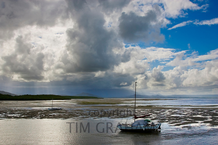 Sailing boat moored at low tide in the Port Douglas estuary, Queensland, Australia