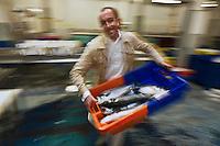 Europe/France/Bretagne/56/Morbihan/Lorient:  Philippe  Le Lay  du  Restaurant: Henri & Joseph choisit ses poissons chez son mareyeur [Non destiné à un usage publicitaire - Not intended for an advertising use]