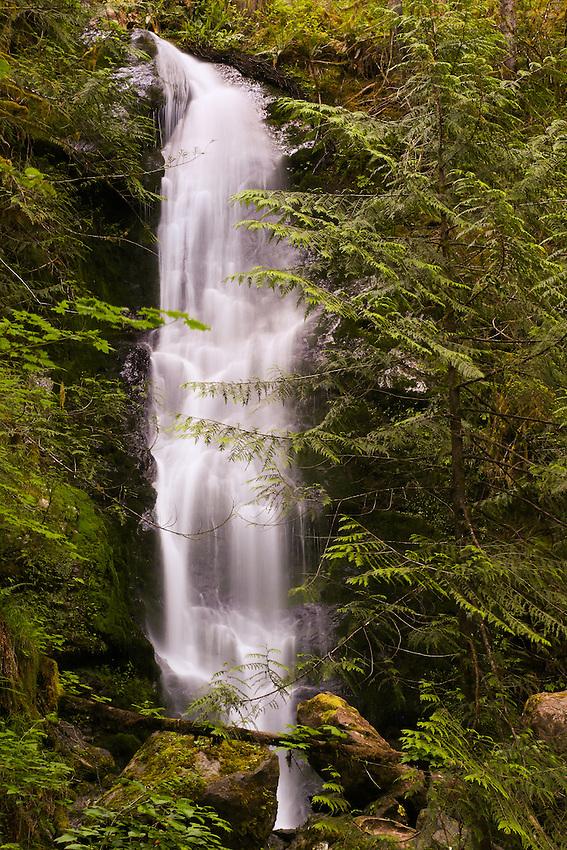 Merriman Falls, Olympic NP, Wa.