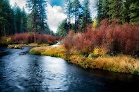 Metolius River and lLake Creek with fall color, Oregon