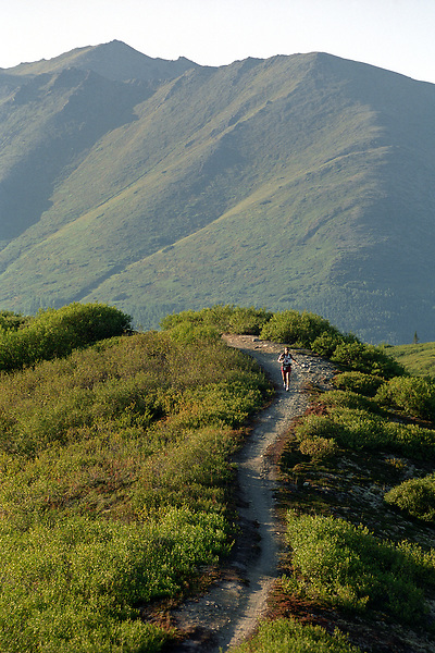 An ultramarathon runner crests a ridge on the Resurrection Pass Trail during the 2004 running of the Resurrection Pass Trail 100-Miler and 50-Miler races. Racers make their way through the Kenai Mountains and the Chugach National Forest between Cooper Landing and Hope, Alaska.