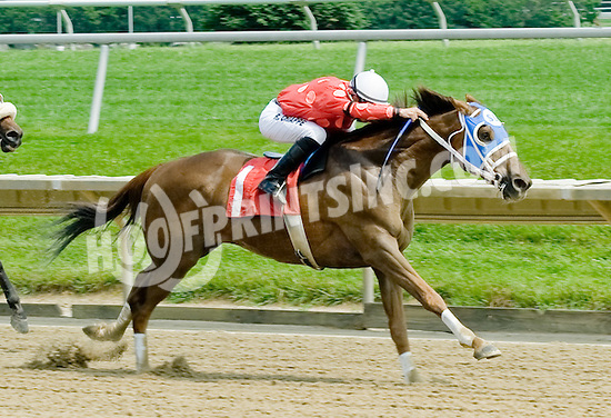 Red Dirt Road winning at Delaware Park on 5/31/11