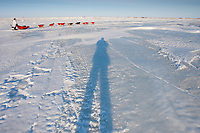 hotographer's shadow follows Paul Gebhart on the Unalakleet slough ice after leaving Unalakleet in Arctic Alaska during the 2010 Iditarod
