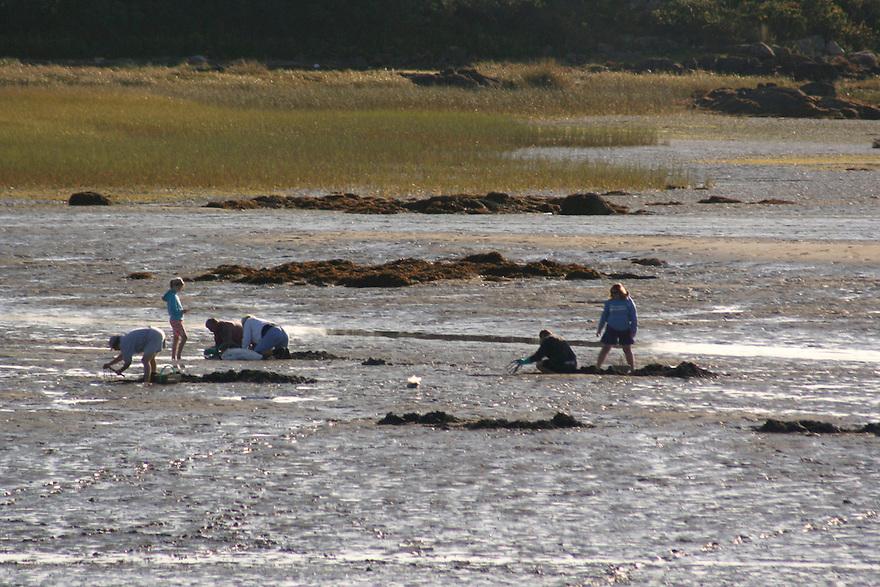 Cape Porpoise clam flats