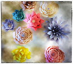 Paper Flowers this photo was taken with my iPhone during my photo walk about in Santa Clarita California on September 10, 2016 @Fitzroy Barrett