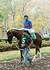 Carry the Torch before The Xtra Heat Stakes at Delaware Park on 10/27/12...