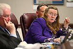 Nevada Assemblywoman Maggie Carlton, D-Las Vegas, talks about the Department of Motor Vehicle budget during a hearing at the Legislative Building in Carson City, Nev., on Tuesday, May 5, 2015. <br /> Photo by Cathleen Allison