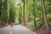 peloton racing through the Zoniën Forest<br /> <br /> Brussels Cycling Classic 2016