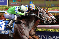 HALLANDALE BEACH, FL - JANUARY 28:  #3 Imperative with jockey Antonio Gallardo on board duels with #4 Stanford to win the $400K Poseidon Stakes at Gulfstream Park on January 28, 2017 in Hallandale Beach, Florida. (Photo by Liz Lamont/Eclipse Sportswire/Getty Images)