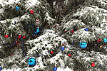 Holiday Ornaments hanging on a evergreen Christmas Tree outside during a snow storm