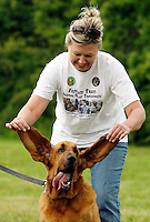 Rhonda Sims plays with Drake's ears during the Walk the Dog event Saturday at Chris Taylor Park. Drake is one of the Anderson Police Department's K-9 units who were on hand at the fundraiser for the Department of Animal Control.