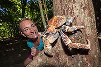 woman tourist, observing coconut crab, robber crab, or palm thief, Birgus latro, climbing on tree, Christmas Island, Australia