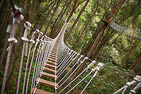 View of platforms and bridges on the Big island with Kohala zipline in the Hawaiian rainforest.