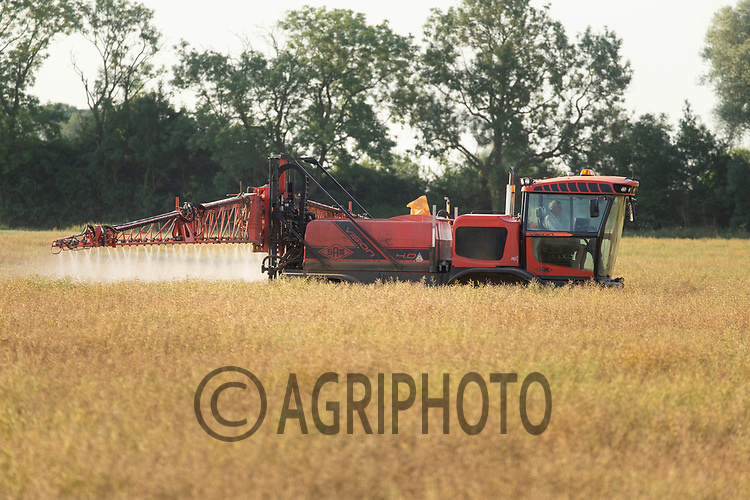 22.6.2020 Desiccating oilseed rape <br /> ©Tim Scrivener Photographer 07850 303986<br />      ....Covering Agriculture In The UK.