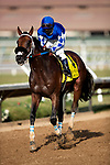 AUG 23: Mo Forza and Flavien Prat win the Del Mar Mile at Del Mar Thoroughbred Club in Del Mar, California on August 223, 2020. Evers/Eclipse Sportswire/CSM