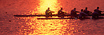 Rowing, Crew, Rowers racing eights through sun line, two crews at sunset, panorama,.