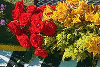 Tournament of Roses Parade, Floats, Los Angeles CA, Pasadena, California