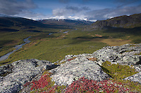 View along Rapadalen from Nammajs mountain, Sarek National Park, Laponia World Heritage Site, Sweden