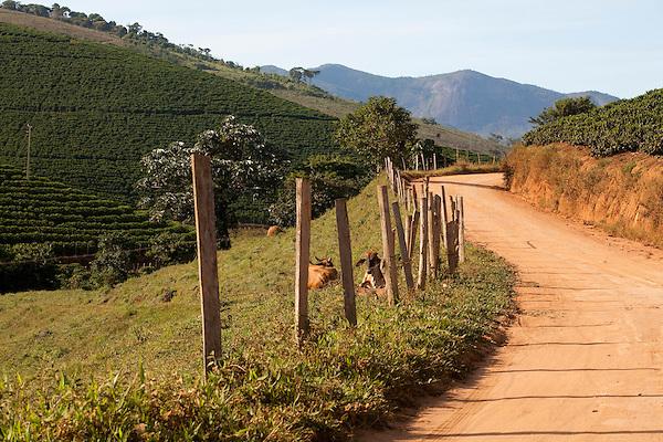 Pedra Bonita_Brasil...Estrada de terra Pedra Bonita, Minas Gerais...A dirty road in Pedra Bonita, Minas Gerais...Foto: LEO DRUMOND / NITRO