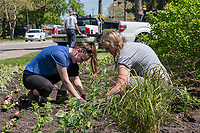 It's been a slow start to a colourful season in Sarnia's Parks. City of Sarnia gardener Lance Allin says cold and wet spring weather has set back planting of floral gardens this year. But all beds should be planted by mid-tune, he said. Working on the floral gardens along the east side of Front Street are from left; summer student Michelle Hillier  Lance Allin and seasonal worker Kelsey Ferguson.