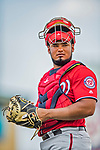 24 February 2019: Washington Nationals top prospect catcher Raudy Read in action during a Spring Training game against the St. Louis Cardinals at Roger Dean Stadium in Jupiter, Florida. The Nationals defeated the Cardinals 12-2 in Grapefruit League play. Mandatory Credit: Ed Wolfstein Photo *** RAW (NEF) Image File Available ***