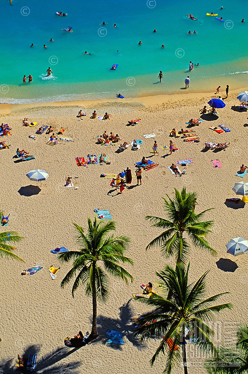 Beautiful Waikiki Beach shot from above, with a group of graceful palm trees on the beach and scores of people enjoying the sea and sand.